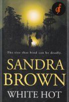 Sandra Brown'dan Beyaz Sıcak 2016 izle 1080p